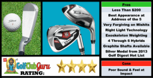 Photos, Review, Ranking, Pros, and Cons of the Budget Seniors Wilson D-100 Graphite Iron Set