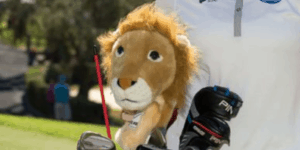 Best Headcovers for Golf