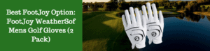 pack lot 2 golf gloves discount