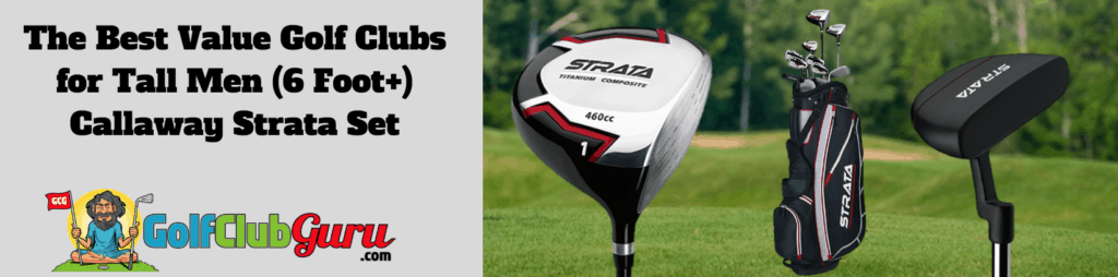 best value golf clubs tall male