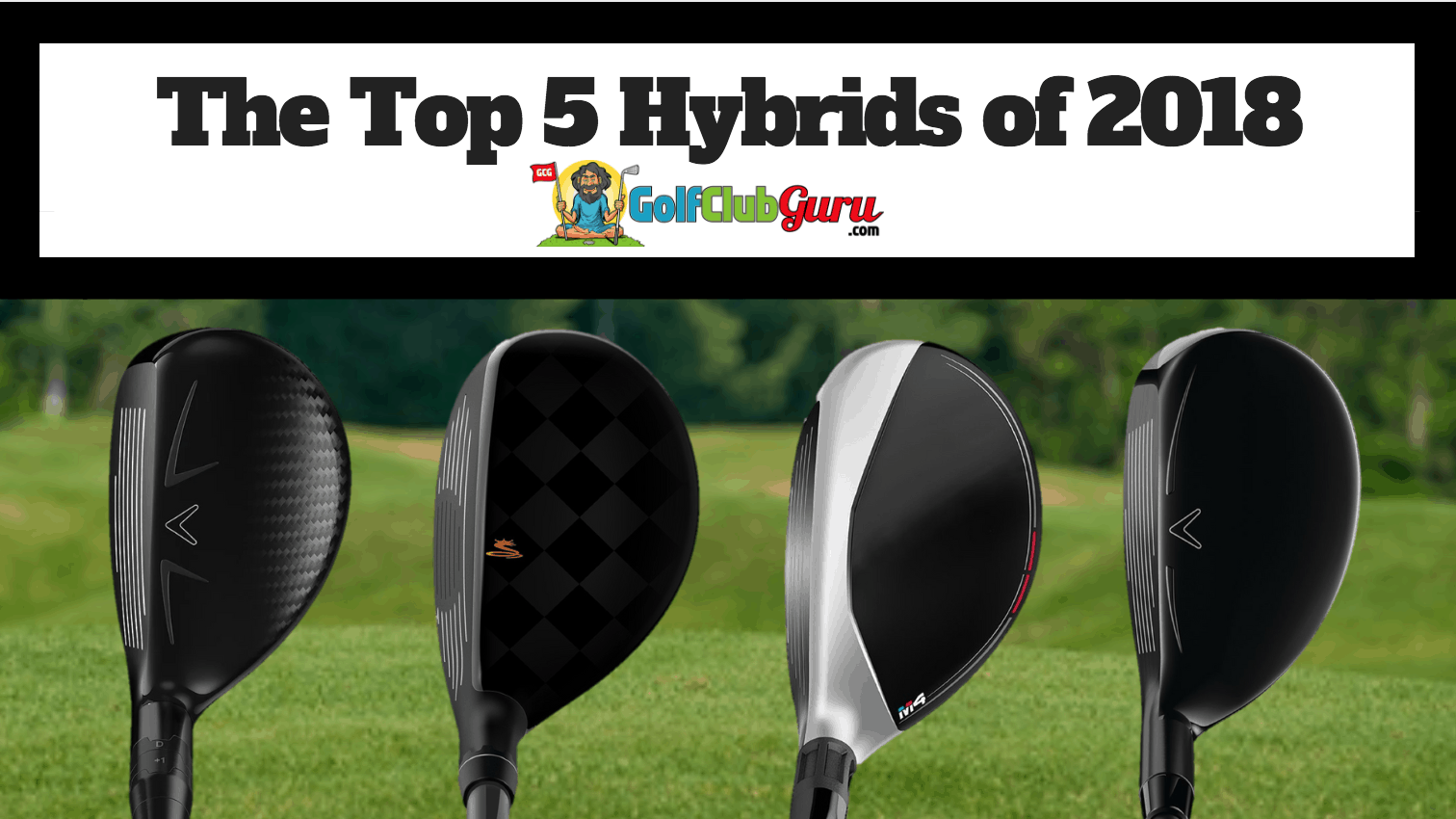 The 5 Best Hybrids In 2018