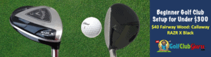 fairway wood for new golfer
